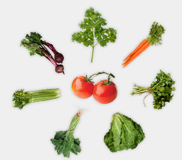 grouping of vegetables